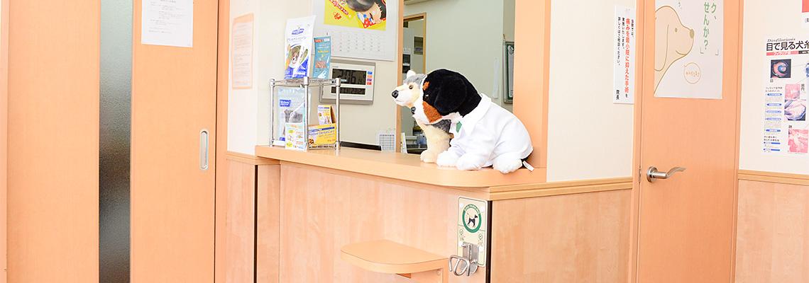ひらい動物病院内観